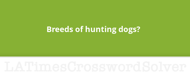 Breeds Of Hunting Dogs Crossword Clue
